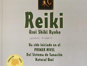 REKI 1